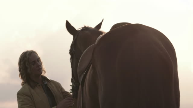 lockdown shot of young woman caressing horse against sky - herbivorous stock videos & royalty-free footage