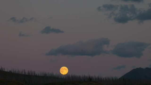 lockdown time lapse shot of moonrise over landscape at national park against sky - jasper national park, canada - jasper national park stock videos & royalty-free footage