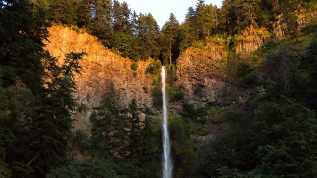lockdown time lapse shot of multnomah falls from cliff amidst trees in forest during sunset - portland, oregon - portland oregon fall stock videos & royalty-free footage