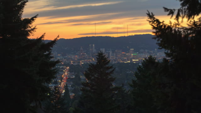 lockdown time lapse shot of trees against illuminated cityscape against sky during sunset - portland, oregon - portland oregon fall stock videos & royalty-free footage