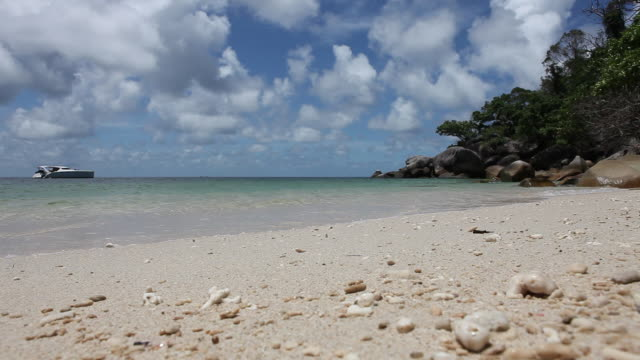 ws lockdown view of a beach and the sea - fitzroy island stock videos and b-roll footage