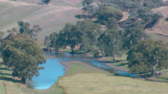 locked off country scene of small waterhole with low water level surrounded by trees nestled amongst small hills / wide shot of farm settlement... - waterhole stock videos & royalty-free footage