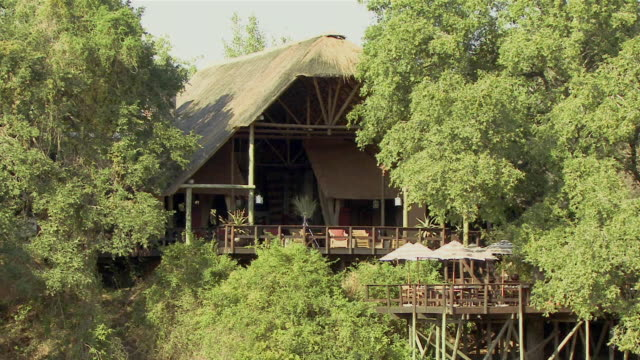 ws lodge between trees in kruger national park / mpumalanga province, south africa - mpumalanga province stock videos and b-roll footage