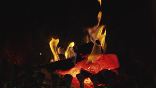 SLO MO Log Fire