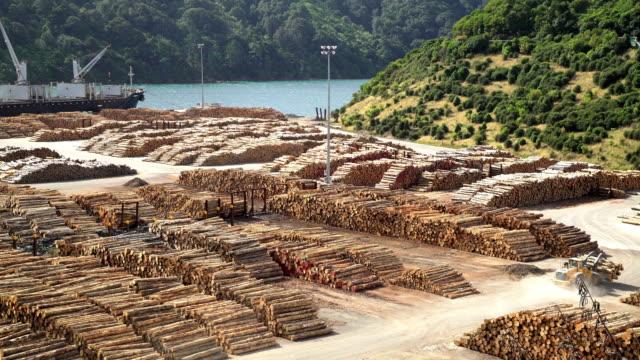 log grabber at deforestation lumberyard picton new zealand - 丸太点の映像素材/bロール