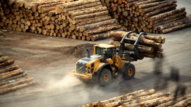 log grabber at deforestation lumberyard picton new zealand - industria forestale video stock e b–roll