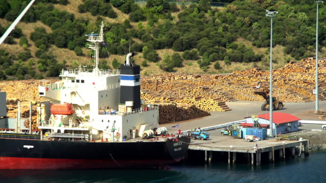 log grabber loading bulk carrier picton new zealand - forestry industry stock videos & royalty-free footage