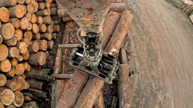 pov log grapple crane moving logs - industria forestale video stock e b–roll
