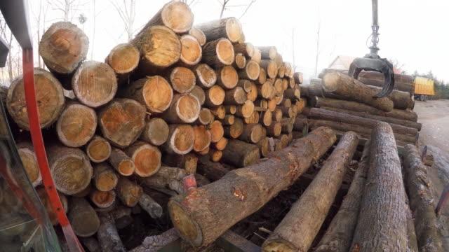 stockvideo's en b-roll-footage met ld log grapple bewegende logboeken op een zagerij - bouwmachines