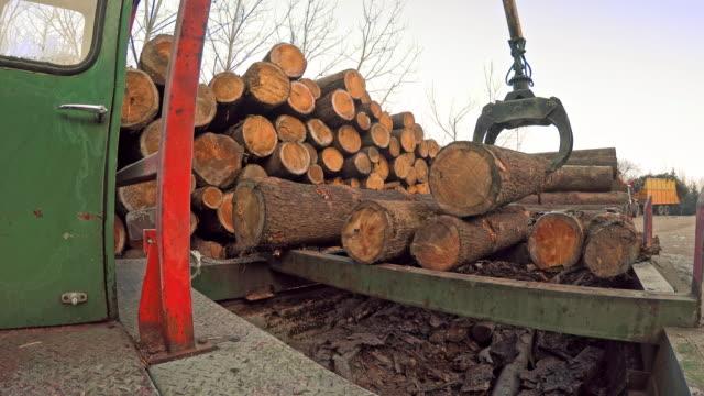 stockvideo's en b-roll-footage met ld log grapple sorteren van logboeken op een zagerij - bouwmachines