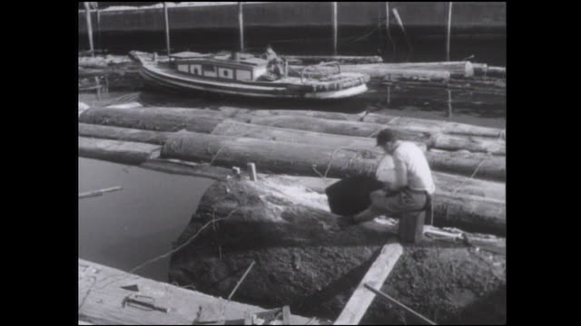 a logger uses a handsaw to cut a log as it floats in a channel. - 木こり点の映像素材/bロール