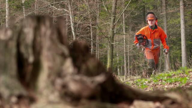 vídeos y material grabado en eventos de stock de hd: registrador caminando en un bosque - leñador