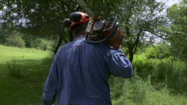 ms pov logger walking through forest with chainsaw on shoulder, stowe, vermont, usa - holzfäller stock-videos und b-roll-filmmaterial