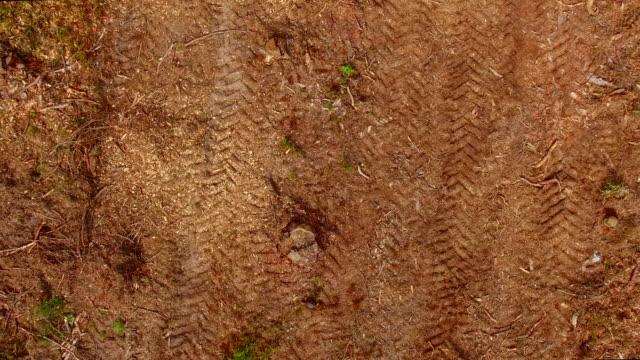vídeos de stock e filmes b-roll de logging clear cut aerial - fábrica de papel