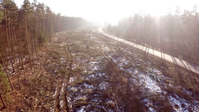 Logging clear cut and highway
