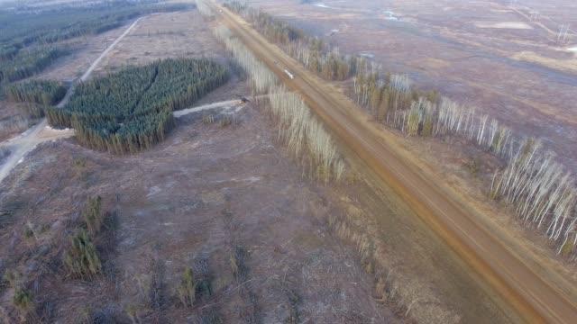 logging operation cut block - hardwood stock videos & royalty-free footage