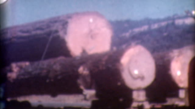 logging timber 1950's - forestry industry stock videos & royalty-free footage