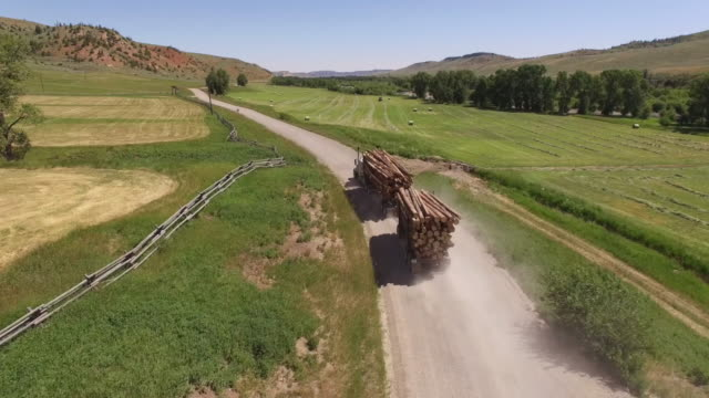 Logging truck fly to tractor harvesting, 4K Video of Cornfield and agriculture production like corn, wheat, soybean, sunflowers, and vineyards with tractor, logging