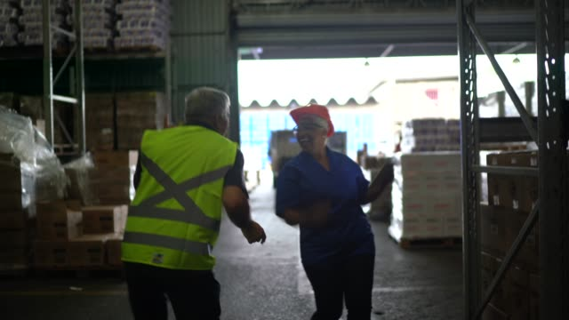 logistics coworkers dancing at warehouse - satisfaction stock videos & royalty-free footage
