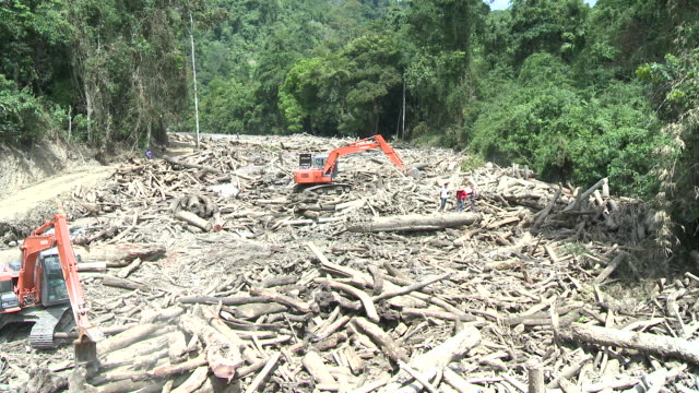 Logs being moved blocked river due to giant landslides