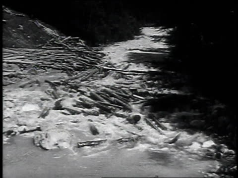 vídeos de stock e filmes b-roll de 1947 montage logs floating and tumbling down the river / austria - 1947