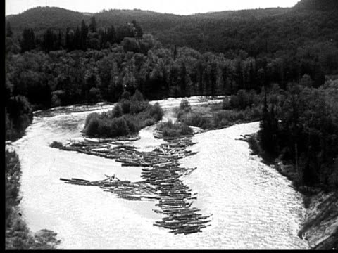 1927 b/w montage ws pan ha logs floating down river, ontario, canada - 1927 stock videos & royalty-free footage
