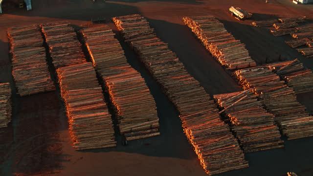 ポートのドックサイドに積み上げられたログ - 空中 - 材木置き場点の映像素材/bロール