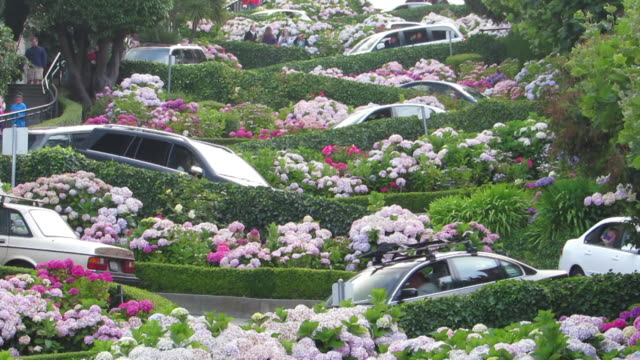 vídeos de stock, filmes e b-roll de lombard street in san francisco is filled with cars desending down the world's most crocked street on a california summer day - lombard street san francisco