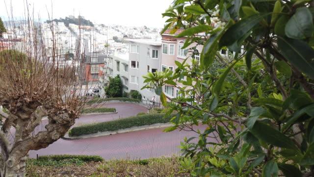 クルックド ロンバード ストリート、サンフランシスコ - サンフランシスコ ロンバード通り点の映像素材/bロール
