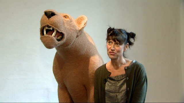 Commissioned artworks Location unknown Shauna Richardson setup shot with crocheted lion model / interview SOT Close ups of face of crocheted lion...