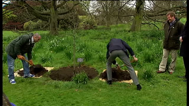 london 2012 olympic games: kew gardens unveils olympic rings made of flowers; england: london: kew gardens: ext various gvs of lord coe planting an... - キュー点の映像素材/bロール