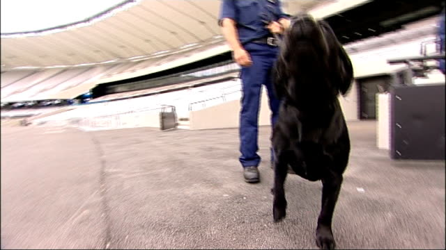 police begin preparations for terror threats antiterrorist police officers searching rows of seats police sniffer dog sniffing at camera then barking... - counter terrorism stock videos & royalty-free footage
