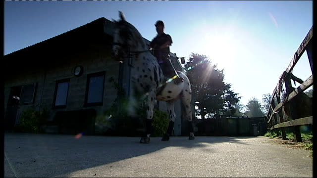 many paralympian athletes struggle to find sponsorship england location unknown int lee pearson cbe getting onto horse with help from trainer pearson... - 乗馬点の映像素材/bロール
