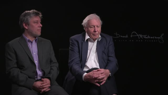 london, 9 march 2020 - sir david attenborough, on the one thing he recommends people to do if they're concerned about climate change on march 9, 2020... - celebrities stock videos & royalty-free footage