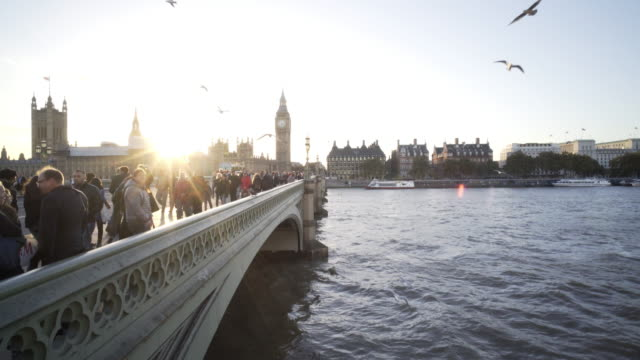 london and the houses of parliament - westminster bridge stock videos & royalty-free footage