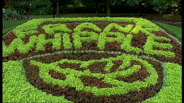 vídeos y material grabado en eventos de stock de bethnal green: ext carpet-bed of flowers spelling out the name 'frank whipple' various of frank whipple and his disabled daughter peggy whipple... - ortografía