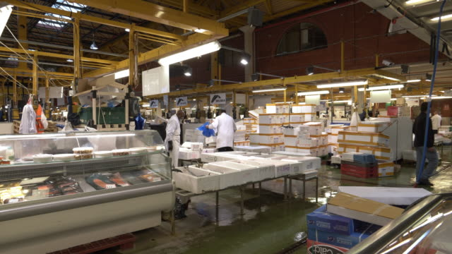 london billingsgate fish market - fish market stock videos and b-roll footage
