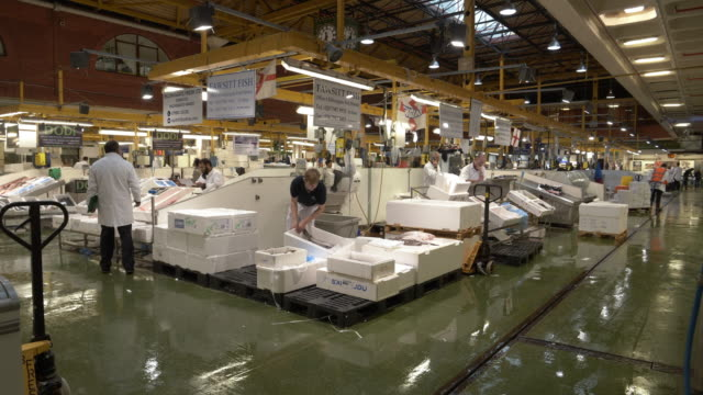 london billingsgate fish market - reduction stock videos and b-roll footage