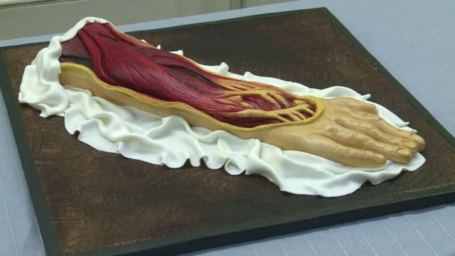 london cake maker brings medically inspired horror to a series of edible creations in time for halloween. clean : eat your heart out cake on october... - greater london stock videos & royalty-free footage
