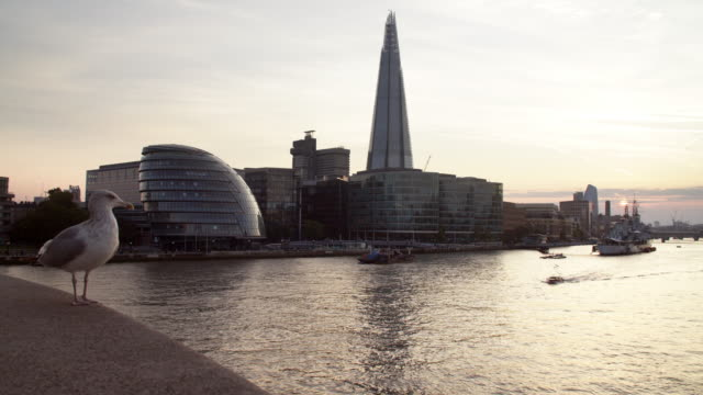 stockvideo's en b-roll-footage met londen city hall en de scherf bij zonsondergang - town hall
