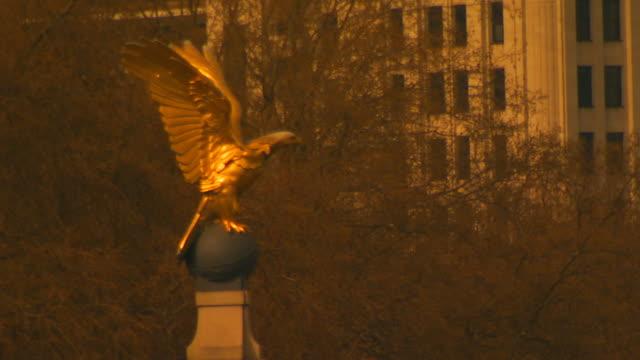 london, englandgolden eagle statue - animal representation stock videos & royalty-free footage