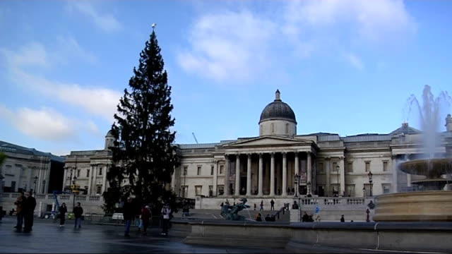 London EXT General view of Norwegian spruce in Trafalgar Square gifted to Britain by the people of Norway PULL OUT Sign explaining history of tree...