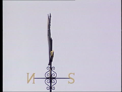 london ext old father time weather vane at lords cricket ground sign bearing image of the weather vane turnstiles at entrance to cricket ground pull... - lords cricket ground stock videos and b-roll footage