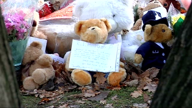 london finchley ext floral tributes soft toys plaques and cards at memorial plaque site where ashes of baby p were scattered - memorial plaque stock videos and b-roll footage