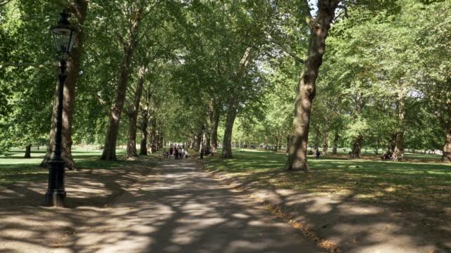 vídeos de stock, filmes e b-roll de parque verde de londres - parque green