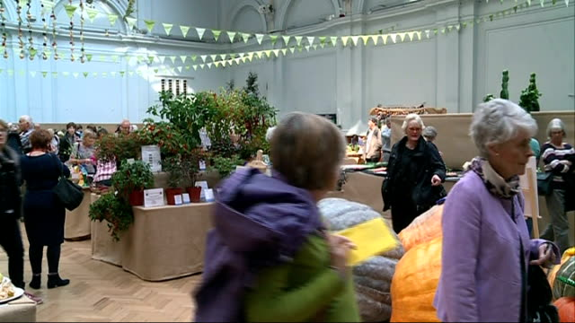 london harvest festival; ruth anders large pumpkins on display gv festival dried flowers hanging up rfocus visitors behind gv festival chris smith... - royal horticultural society stock-videos und b-roll-filmmaterial