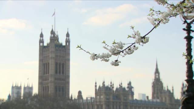 london in the spring - real time stock videos & royalty-free footage