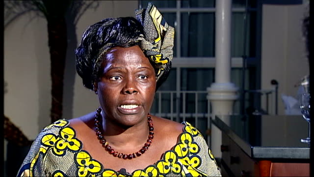 london int wangari maathai interview sot want abiding agreement want forests to be incorporated as part of agreement will be financial mechanism q... - oresund region stock videos & royalty-free footage