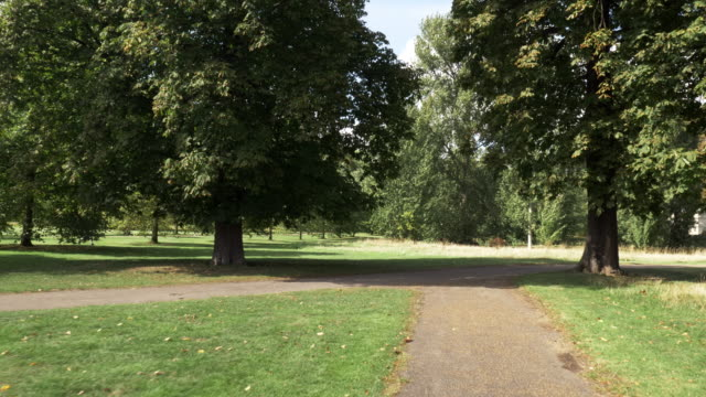 london kensington gardens explored by bicycle - public park stock videos & royalty-free footage