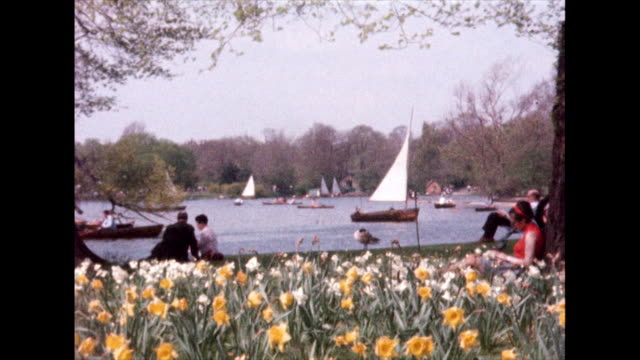 london park in spring with lake and child feeding ducks; 1958 - lakeshore stock videos & royalty-free footage